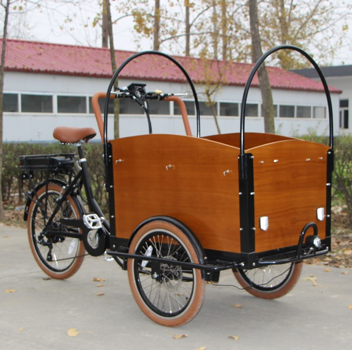 Three Wheel Front Box Pedal Assist Electric Cheap Cargo Trike