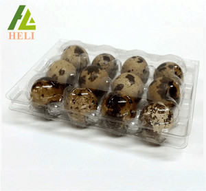 12 Holes Plastic Quail Egg Box