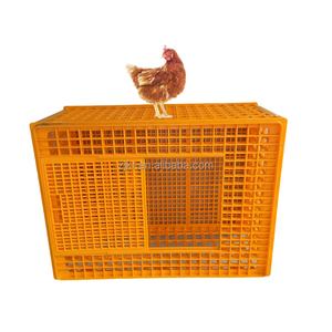 High quality poultry plastic poultry chicken transport cage