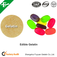vegetarian gelatin powder