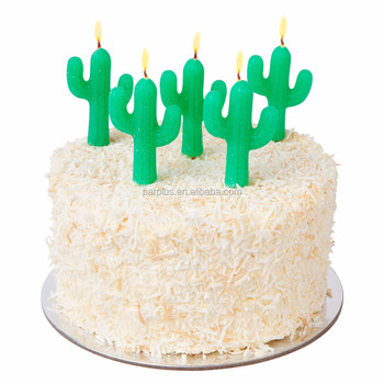 Happy Summer Themed Cactus Cake Pick Birthday Fireworks Candle