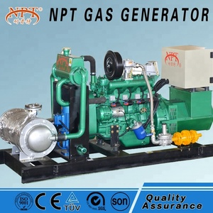 Customized CE approved 25KW generator biogas for electricity
