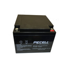 PKCELL sealed lead-acid 12v 24ah rechargeable electric bike/electric car battery