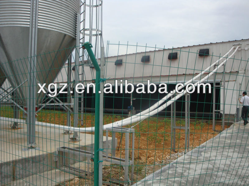 cheap price automatic poultry farm feed equipment