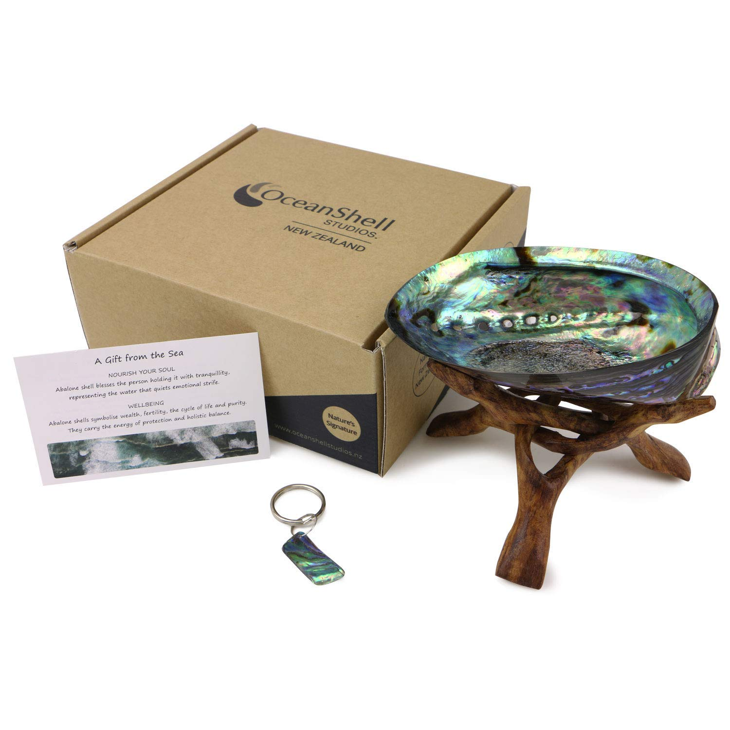 Ocean Shell Studios, 100% Natural New Zealand Premium Polished Abalone Shell with Wooden Tripod Stand, Sustainably Sourced Luméa Pāua, Hand Selected, Large Abalone Shell for Smudging, Home Decor.