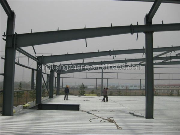 affordable multi-span iron frame warehouse