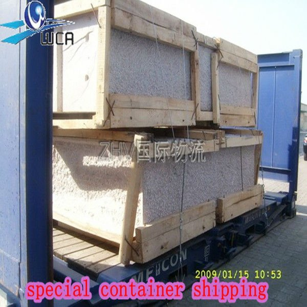 special container shipping expert China to CHENNAI,