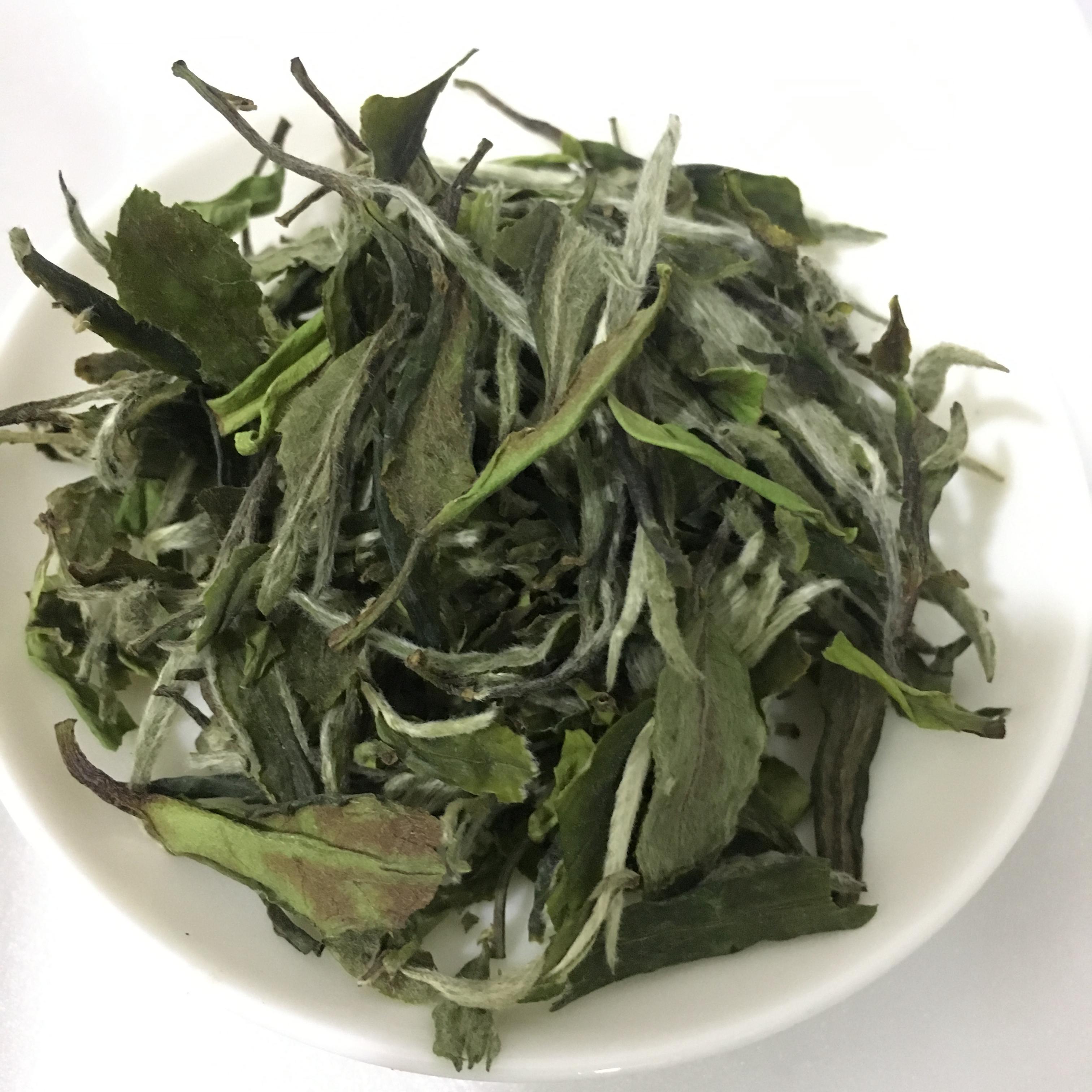 High quality organic white peony bai mu dan loose tea leaf - 4uTea | 4uTea.com