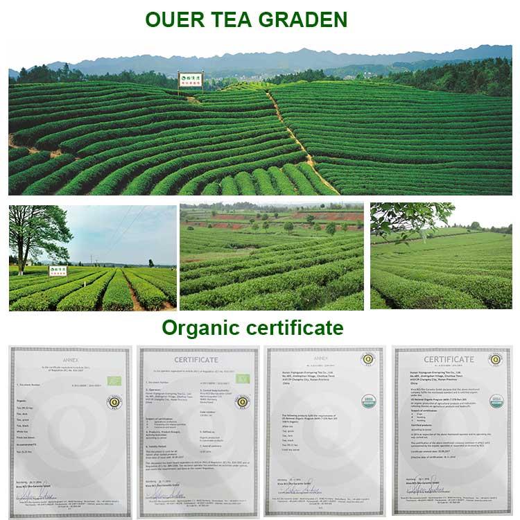 price per kg chunmee green tea 9366 mei-cha uzbekistan afghanistan pakistan emirate