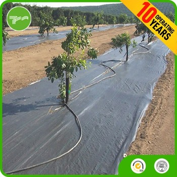 Biodegradable Agricultural Ground Cover Cheap Pe Black