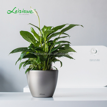 Round Decorative Plant Pots Indoor Hydroponic Irrigation System Factory Price Best Ing