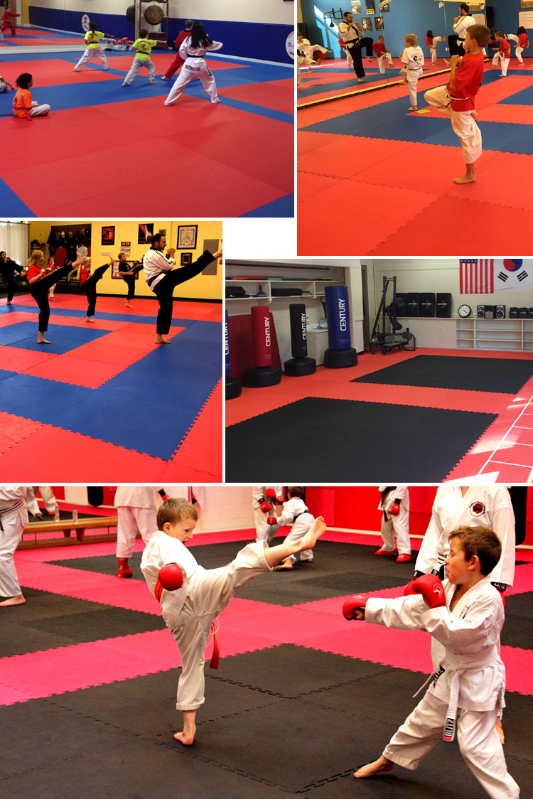 Best Interlocking Gym Mat Trade Assurance Eva Foam Taekwondo Puzzle Mat Judo Tatami Mat
