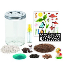 Oempromo creativity grow 'n glow terrarium - science kit for kids
