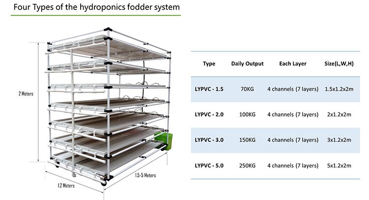 hydroponic system 03
