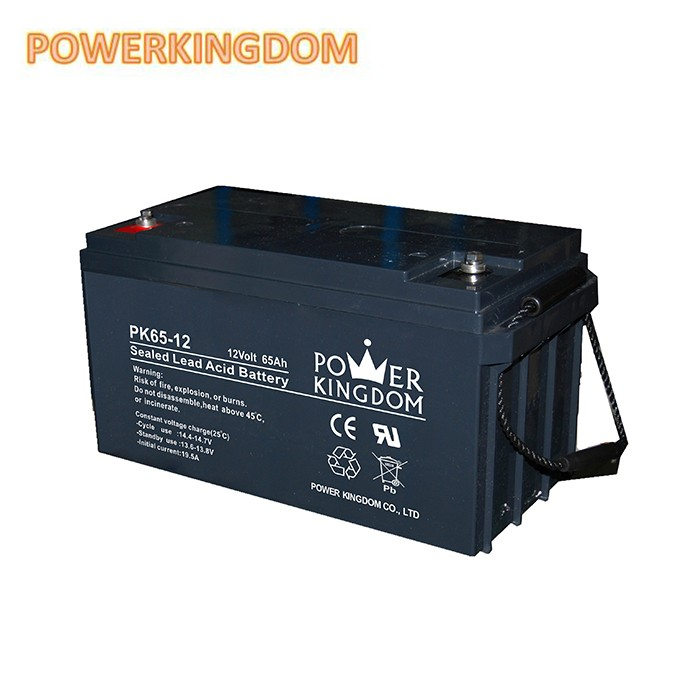 Power Kingdom Top deep cycle battery manufacturers factory price solar and wind power system-2