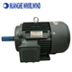 CE certificate IE2 IP55 permanent magnet synchronous motor generator price 10kw