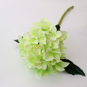 New arrival Single-branch hydrangea flower dried willow branches low moq