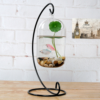 hebei factory transparent flower glass vase fancy hanging glass vase fish bowl buy aquarium. Black Bedroom Furniture Sets. Home Design Ideas