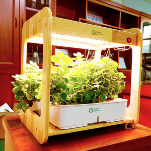 2019 New Arrival Bamboo Kitchen Hydroponic Cultivation Aquaponics Growing Systems farm grow machine