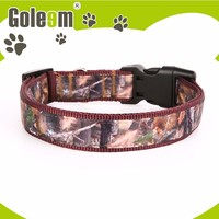 Best Quality Low Price Colorful Cat Collars With Small Bell