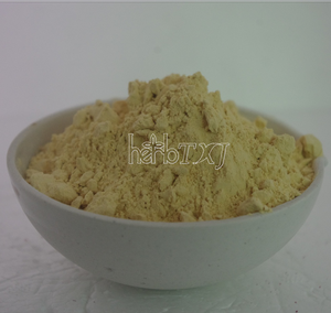 Opuntia Dilllenii Haw Cactus Extract/Cholla Stem extract Powder for Medicine 4:1/10:1/20:1