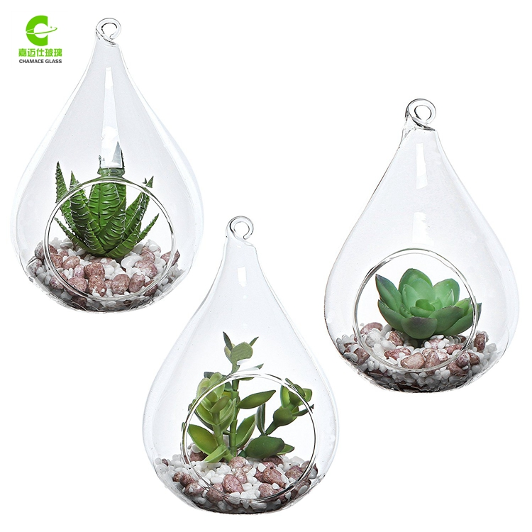 Handblown Glass Terrarium, Handblown Glass Terrarium Suppliers and ...