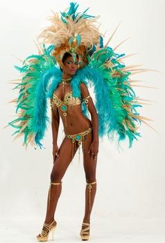 wear carnival Sexy silver