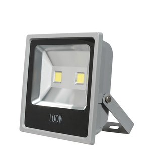 High power High quality IP67 waterproof cob 100w led flood spot light
