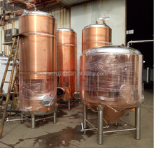 micro craft beer equipment home beer brewing equipment/copper distillation equipment