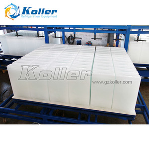 5 tons / day Capacity containerized block ice plant with cold storage