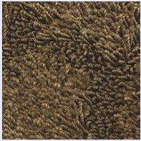 Denver CAPITALS carpet