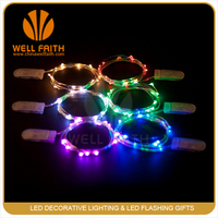 Mini CR2032 Battery Operated Copper Wire 2M 20led Mini Fairy Light String HOT Sell