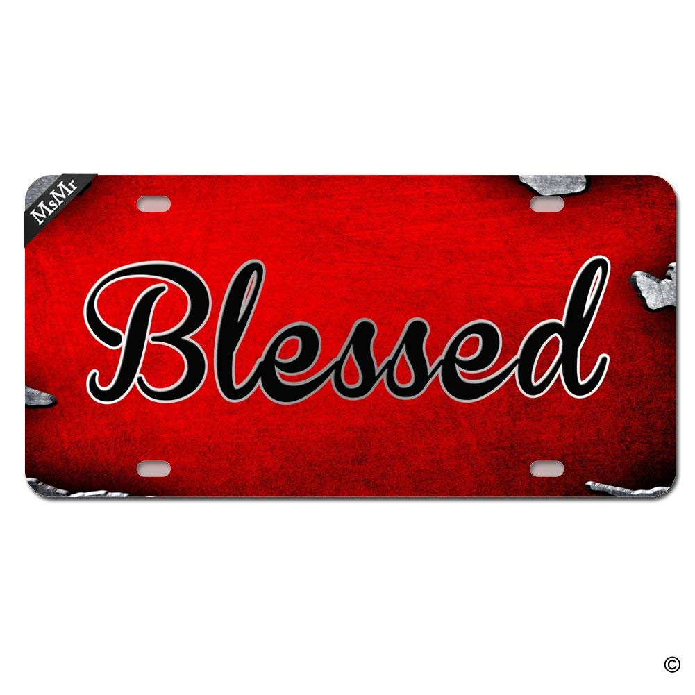 MsMr Funny License Plate Cover with 2 Holes Blessed Designed Decorative Metal Car License Plate Auto Tag