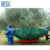 China supplier high quality HDPE olive collecting net