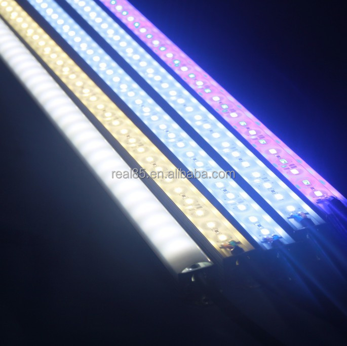 10000k Led Aquarium Light - 1000+ Aquarium Ideas