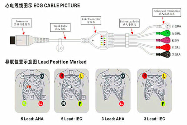 New Product Medical Primedic IEC 3LD Clip 12Pin 3 Lead Wires ECG Cable One-Piece Series Patient Cable With Leads