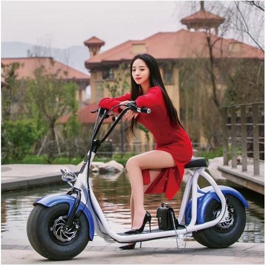 2016 plus populaire citycoco deux roues smart puissant scooter lectrique deux roues lectrique. Black Bedroom Furniture Sets. Home Design Ideas
