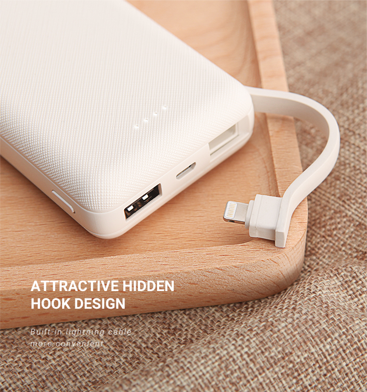 Recci 10000mAh 2A fast Charge best portable power bank for Travelling Using