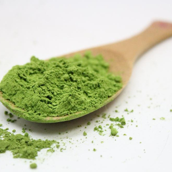 Hot sale Japanese matcha green tea with powder