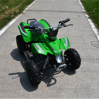 "1000W 48v kids electric quad bike mini atv with 8"" big tyre factory directly"