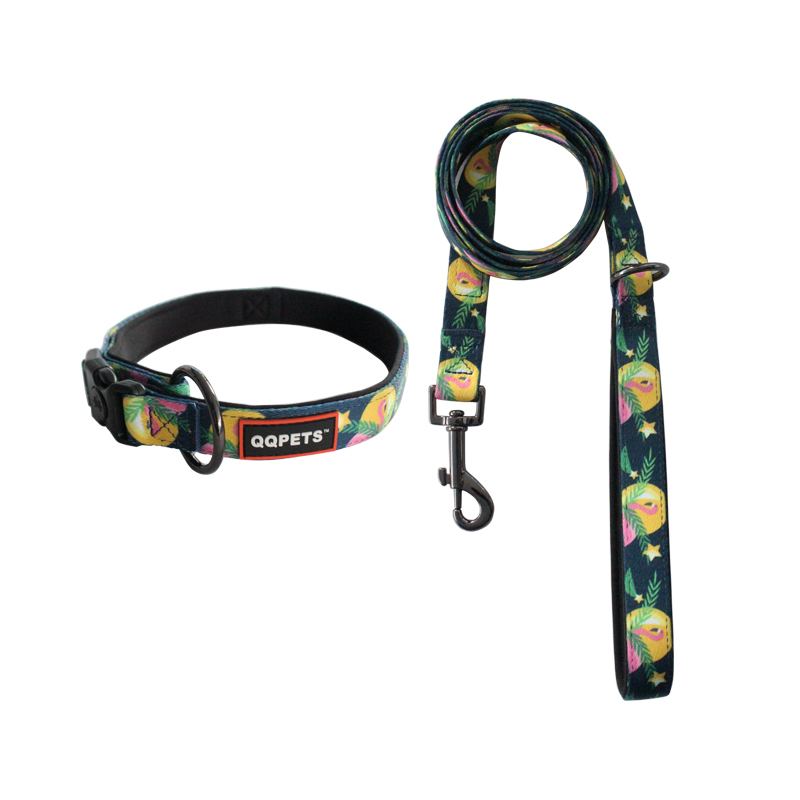Eco dog collar print logo pet lead strong collars leashes wholesale