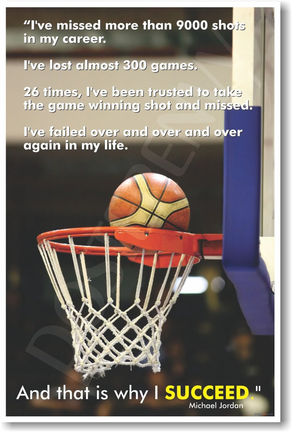 """Michael Jordan """"That Is Why I Succeed"""" - Classroom Motivational Poster"""