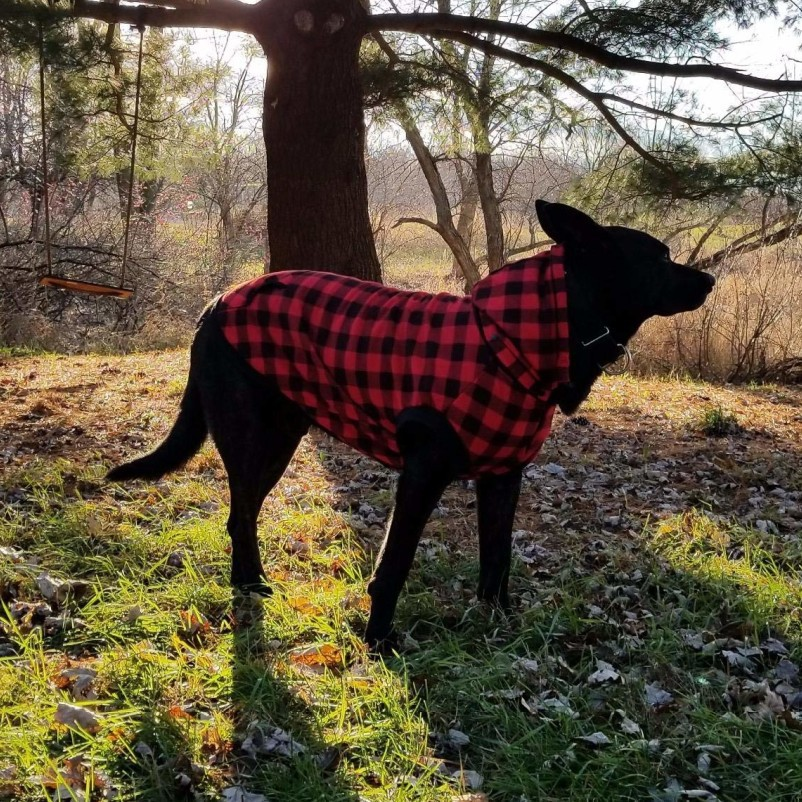 R&H 2019 New Design Winter Velour Lining Warm Plaid Breathable Eco-friendly Winter Cold Weather Pet Apparel Clothes for <strong>Dogs</strong>