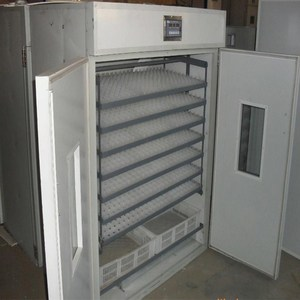 The 1056 type automatic incubator and hatcher/egg incubator hatchery/chicken poultry farm equipment