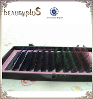 New Fashion from factory directly offer OEM service Two Tone Mink Eyelashes(100% Korea PBT fiber)