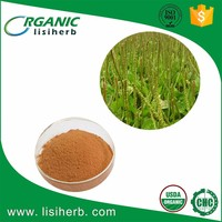 High quality Halal organic psyllium husk powder