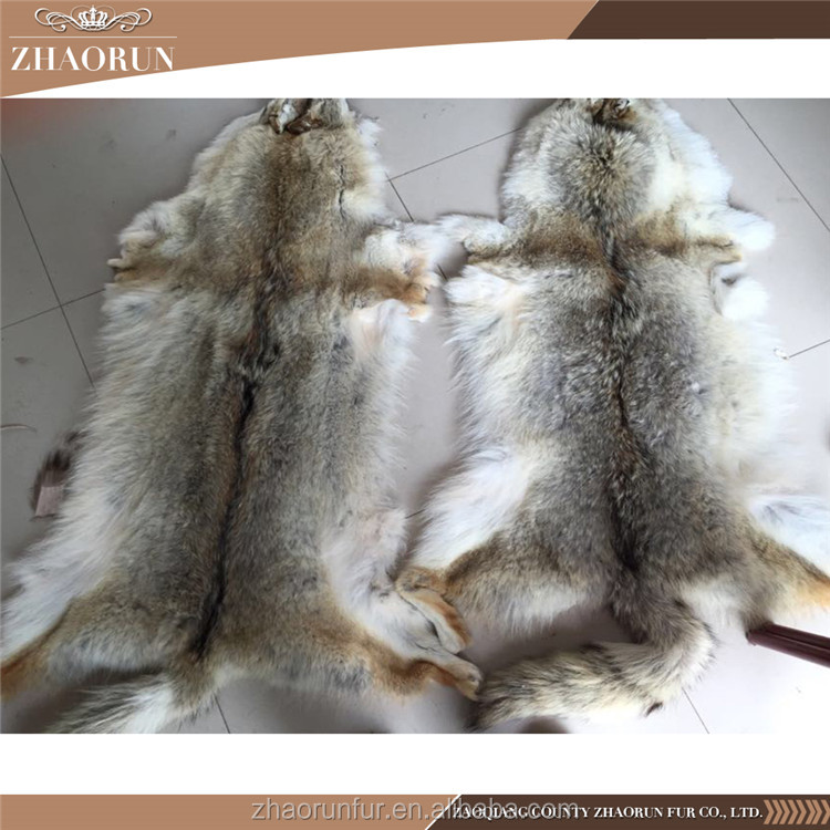 Whole coyote skin coyote fur for garment