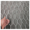 /product-detail/plastic-coated-galvanized-hexagonal-wire-mesh-india-62008442740.html