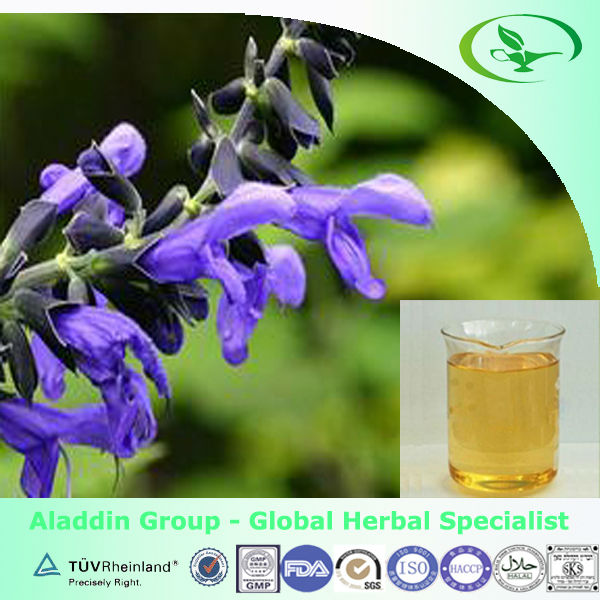 100% natural basil oil with factory price