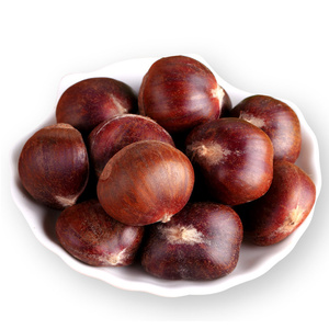 top grade hebei xinglong chestnut